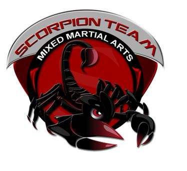 Logo Scorpion team (2)
