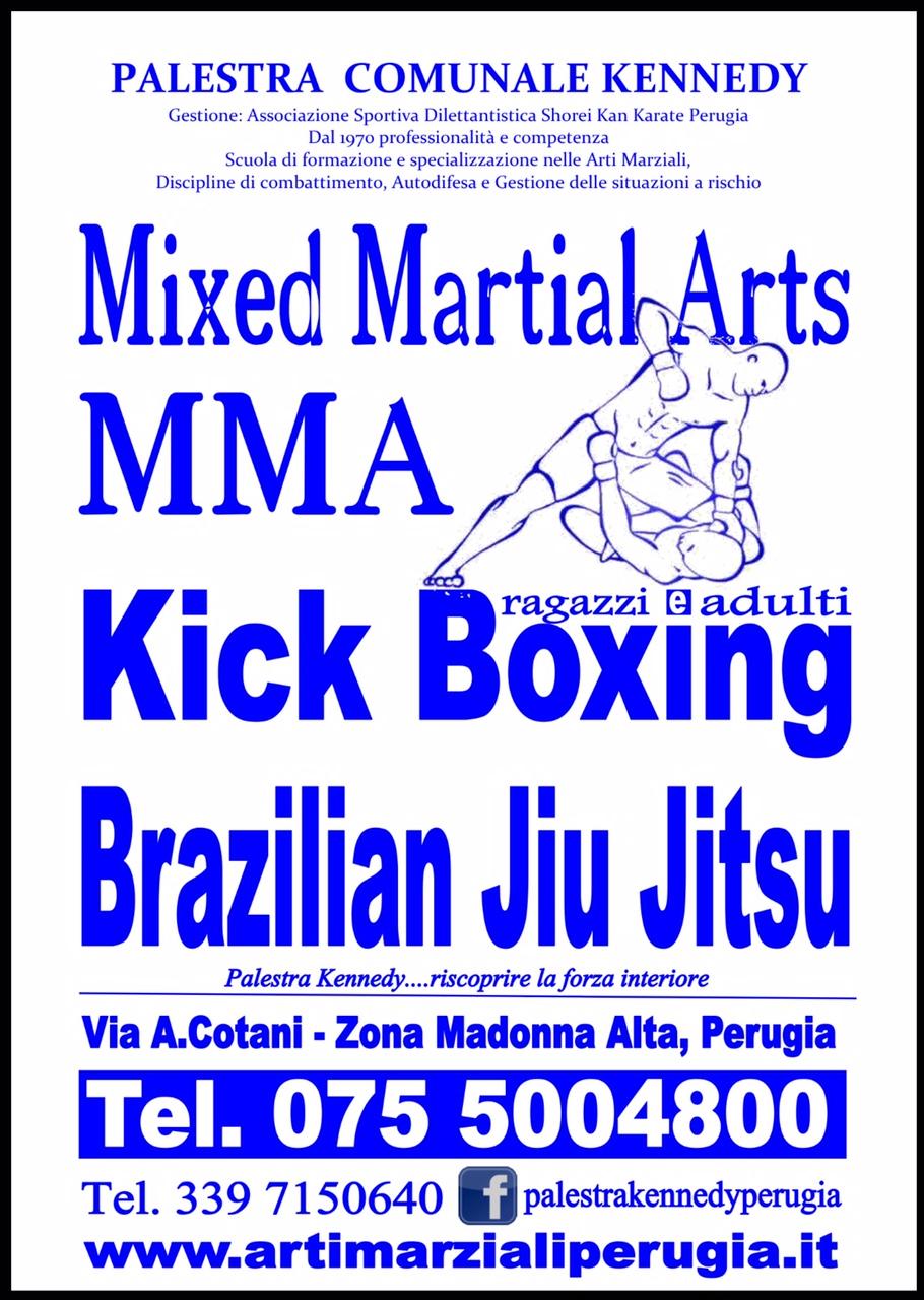manifesto kick boxing 2016