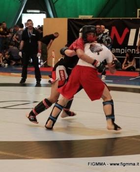 Mixed Martial Arts – MMA