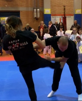 Esibizioni di MMA, BJJ e ISRAELI JIU JITSU